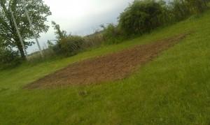 fresh tilled garden spot